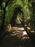 Giardino di Boboli, Foto: Pixabay