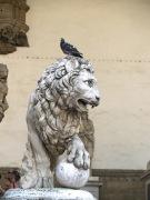 Leo (Piazza della Signoria), Foto:Pixabay